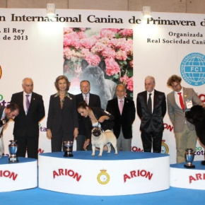 Her Majesty Queen Sofia of Spain Attends the 85th Exposición Internacional Canina dePrimavera.