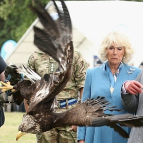 The Prince of Wales and The Duchess of Cornwall Visit the 134th Sandringham Flower Show.