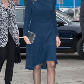 HM Queen Maxima of the Netherlands Attends a Financial Workshop in DenHaag.