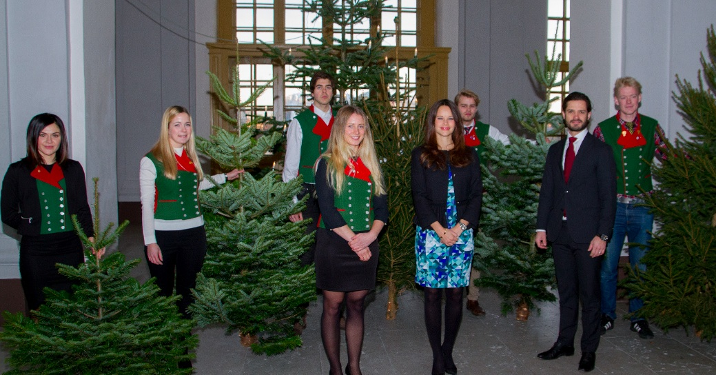 on december 16 2015 their royal highnesses prince carl philip and princess sofia of sweden received several christmas trees from students from the